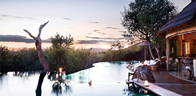 Molori Safari Lodge - Robert Mark Safaris - Luxury African Safaris