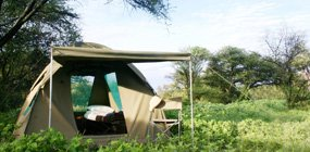 Planet Baobab - Robert Mark Safaris - Luxury African Safaris